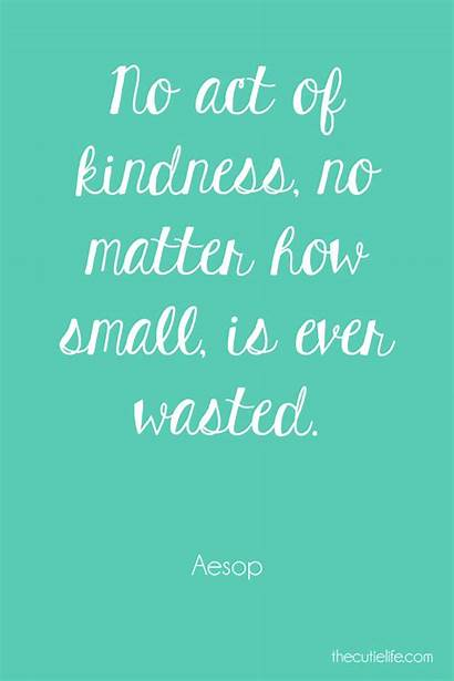 Kindness Wasted Never