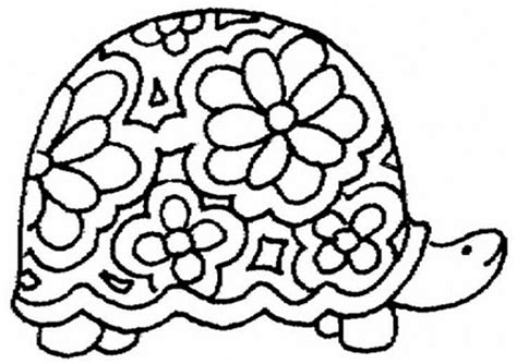 turtle coloring pages  sun flower pages