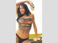 Top Hot Gossips Celebrities Pamela David Beauty From