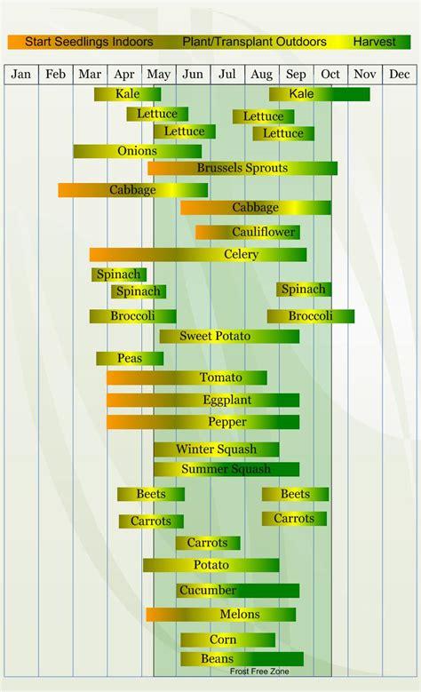 backyard farming planting schedule  zone