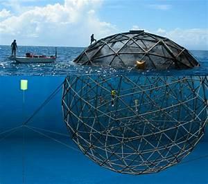 深海遙感養殖網箱- 台灣Wiki