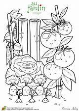 Coloring Pages Jardinage Plantation Potager Le Sur Fruits Dessins Vegetable Colorier Adult Books Colouring Vegetables Dessin Haricot Vegetal Coloriage Template sketch template