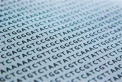 Dna Genes Cancer Bioinformatics Data Breast Babies