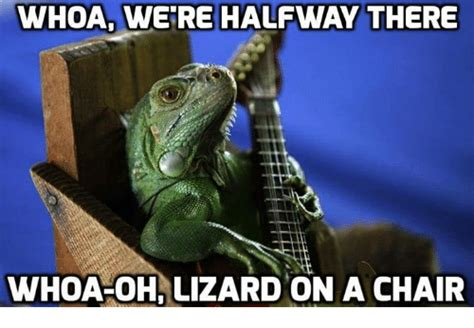 Lizard Memes - whoa we re halfway there whoa oh lizard on a chair meme on sizzle