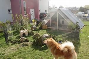 Kaninchengehege Bauen Innen : gartengehege bauen ~ Frokenaadalensverden.com Haus und Dekorationen