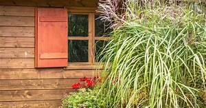 Gräser Im Garten Gestaltungsideen : gr ser im garten gestaltungstipps auf haas ~ Eleganceandgraceweddings.com Haus und Dekorationen