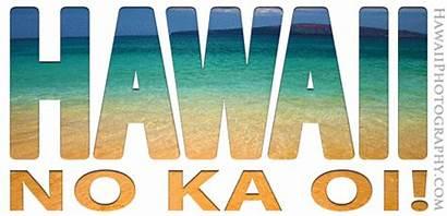 Hawaii Hawaiian Aloha Animated Islands Maui Fun