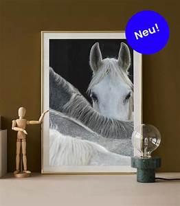 Wandbilder Online Bestellen : wandbilder online bestellen wanddeko und bilder shop juniqe ch ~ Frokenaadalensverden.com Haus und Dekorationen