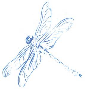 Drawing Dragonfly Stencil