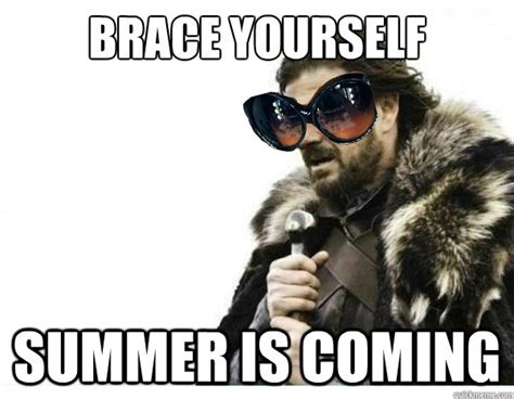 Summer Is Coming Meme - brace yourself summer is coming misc quickmeme