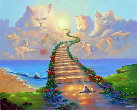 do cats go to heaven in islam
