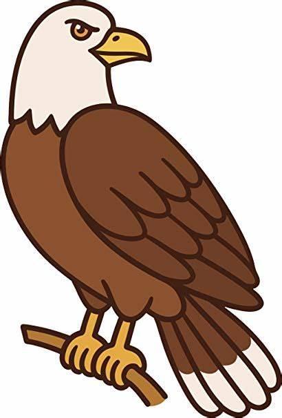 Hawk Cartoon Easy Clipart Eagle Simple Clip