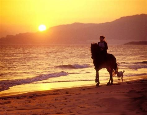 Horseback Riding Tours in Costa Rica | Santa Teresa, Costa ...