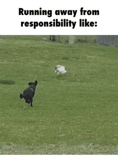 Running Away Meme - 25 best memes about bamboozled doggo bamboozled doggo memes