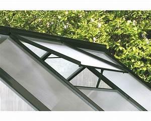 Glas Für Gewächshaus Kaufen : dachfenster vitavia f r gew chshaus calypso ohne glas ~ Articles-book.com Haus und Dekorationen