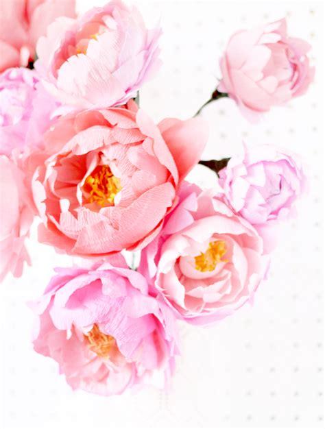 crepe paper fresh cut paper flowers peonies