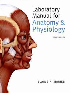 Download Laboratory Manual Urine Culture Procedure
