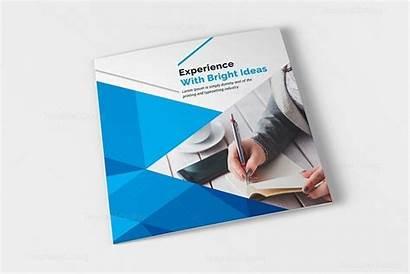 Fold Tri Excellent Brochure Corporate Template