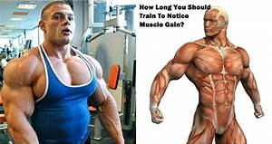 How Long You Should Train To Notice Muscle Gain
