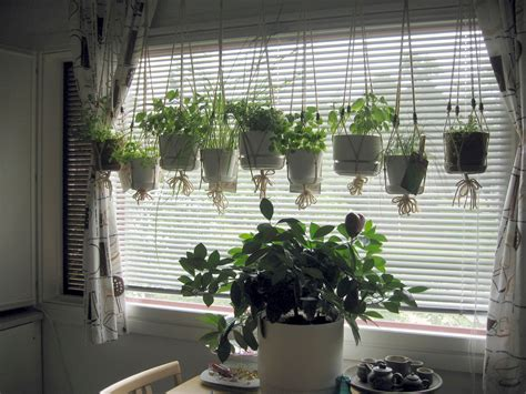 kitchen herb garden ideas kitchen window herb garden bibliafull com