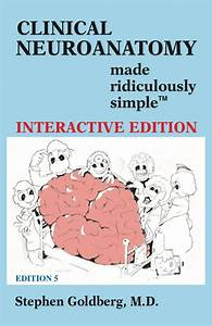 Clinical Neuroanatomy Made Ridiculously Simple 5th Edition Pdf Free Download