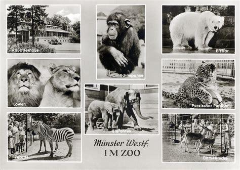 Zoologischer Garten Münster