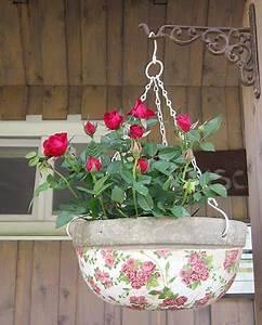 Pflanzen Bewässern Mit Plastikflasche : mehltau mit milch bek mpfen pimp my garden garten mehltau und pflanzen ~ Frokenaadalensverden.com Haus und Dekorationen