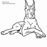 Dane Dog Drawings Coloring Drawing Line Stencil Animal Pages Danes Dogs Quilts Sketches Own Printable Draw Colouring Puppy Sheets Sketch sketch template