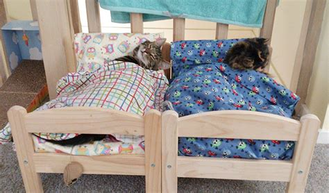 Japanese Cat Owners Turn Ikea Doll Beds Into Adorable Cat
