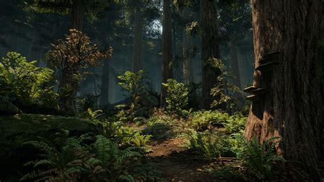 forest    trees shroud   avatar forum