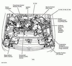 98 Nissan Altima Engine Wiring Diagram
