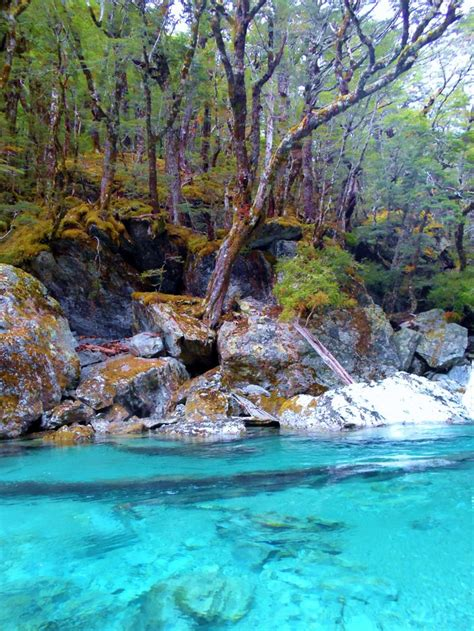 213 Best Images About Hiking Tours New Zealand On