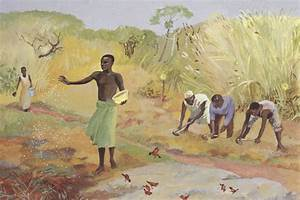 Parable, Of, The, Sower, Archives