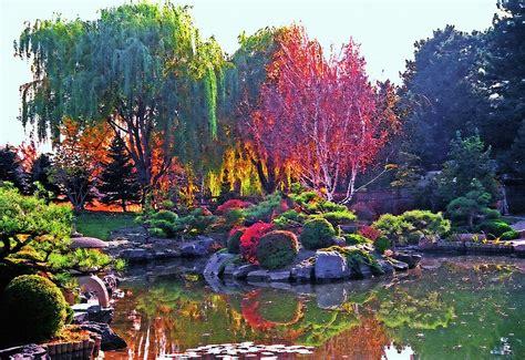 denver botanic gardens denver botanical gardens 3 photograph by steve ohlsen