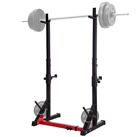 Best Barbell To Buy Best Barbell Rack And Weights To Buy In 2019 Infestis