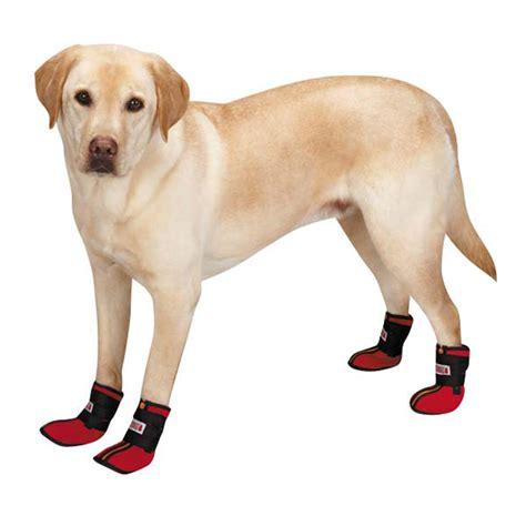 Kong Hightop Neoprene Dog Boots Baxterboo