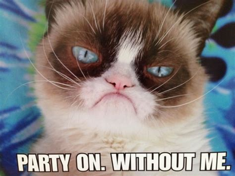Happy 2nd Birthday Grumpy Cat!  Catch My Party