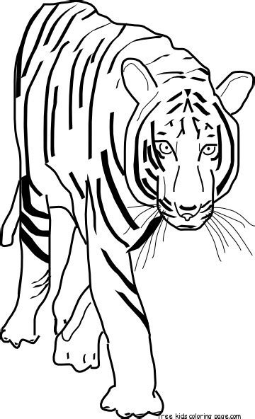 printable coloring pages bengal tigers  printable