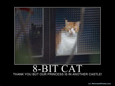 bit cat image cat lovers mod db
