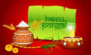 pongal festival pictures images free hd photos happy new year 2017 images status