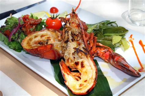 cuisiner un homard vivant homard thermidor recette du homard thermidor partie 1