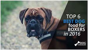 top 6 best dog foods for boxers in 2017 dogstruggles With best dog food for boxers