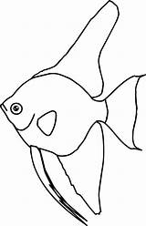 Coloring Angel Fish sketch template