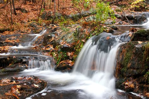 Free Picture Small Waterfall Autumn Season Forest