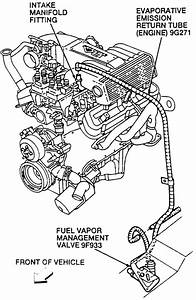 Ford Evaporative Emission System Diagram