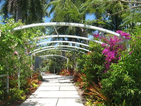 naples botanical gardens more than a bunch of flowers the naples botanical garden