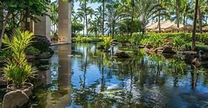 a chaque jardin sa piscine naturelle dossier With energie d une maison 15 piscine naturelle choisir les vegetaux et leur