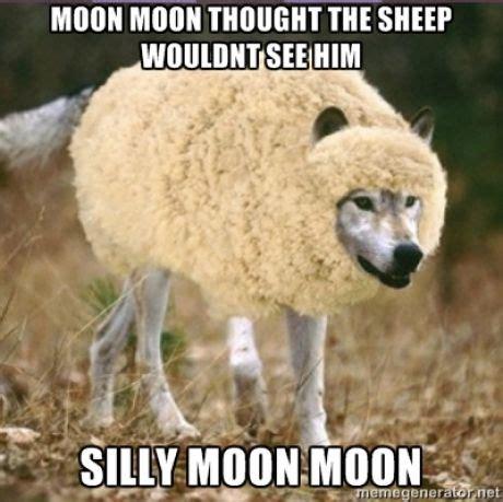 Funny Wolf Memes - best 25 moon moon memes ideas on pinterest