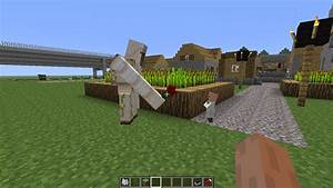 Minecraft Iron Golem Gives A Flower To a Baby Villager ...