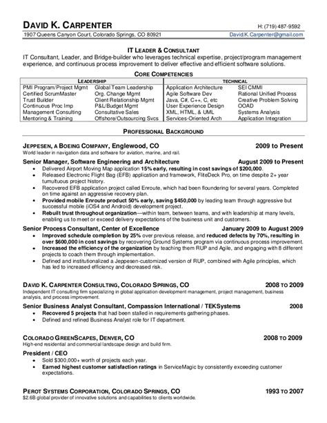 david carpenter s it executive resume